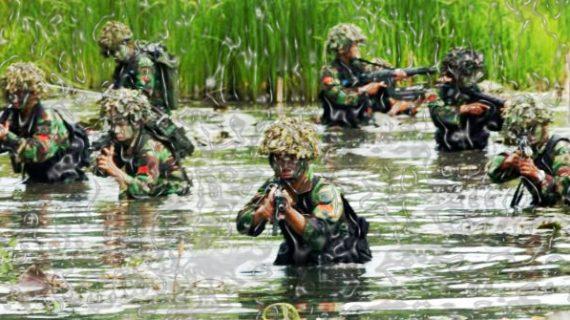 TNI Perlu Punya KoopSus Separatisme